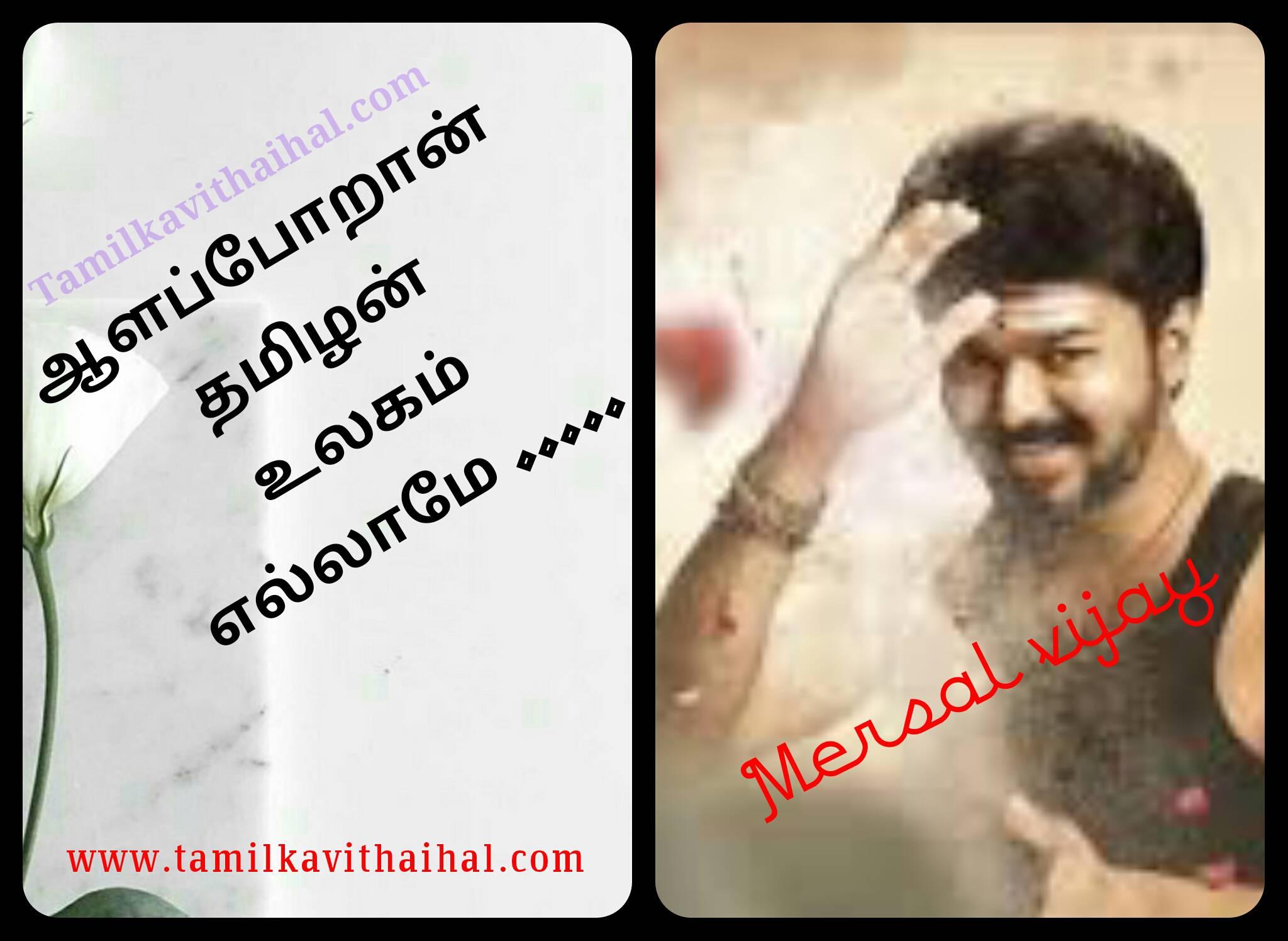 Aalp poraan thamizhan song image download mersal film vijay samantha wallpaper