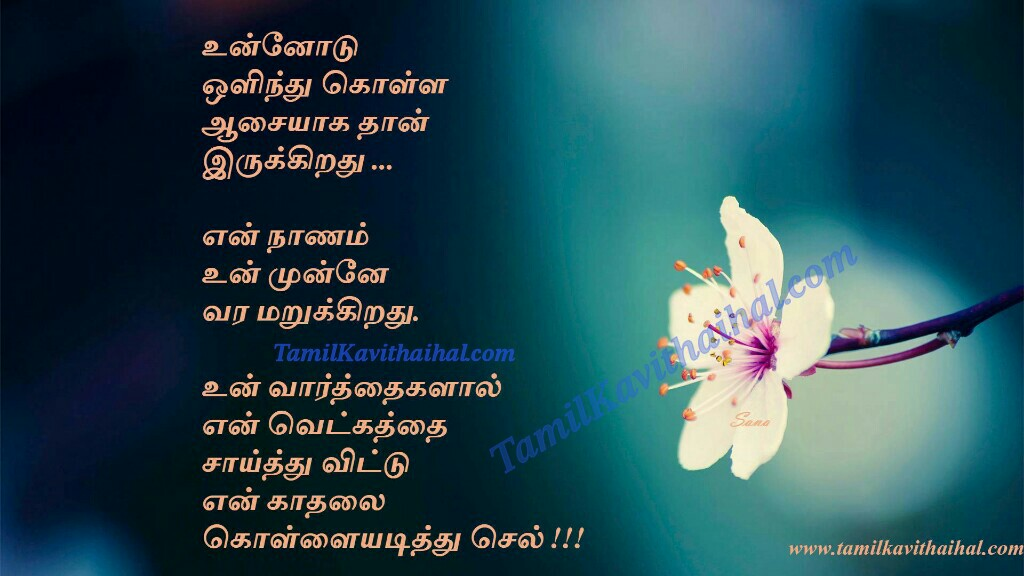 Aasai nanam vetkam kadhal flower varthai words malar kavithai for husband wife ethirparpu images download