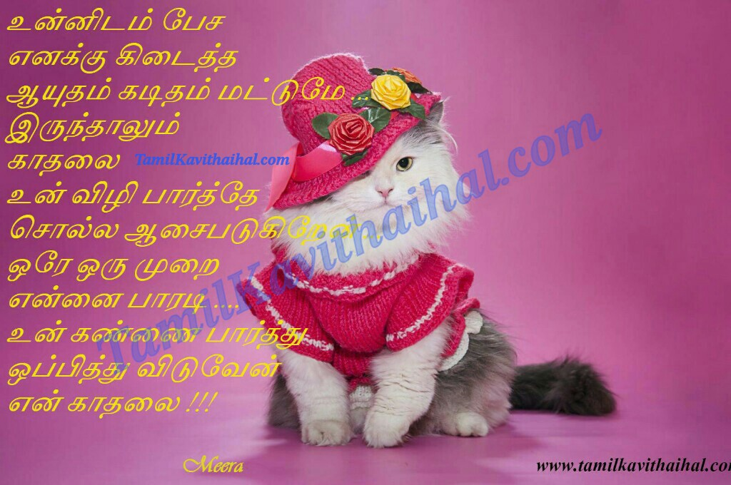 Aasai pesa kan eye vizhi kaditham letter tamil kadhal kavithaigal quotes poems cat meera images download
