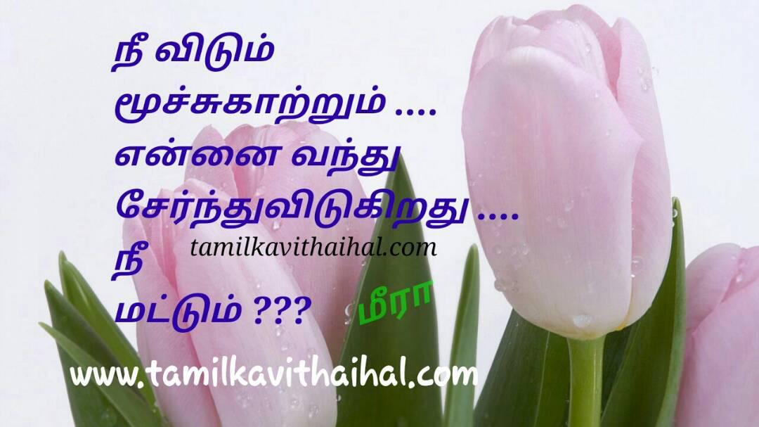 Alaku kadhal kanner kavithai moochu kaatru nee matum illai pirivu sogamana meera poem whatsapp dp status download