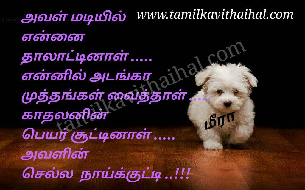 Alaku tamil kadhal kavithai lover boy friend mis feel nick name meera poem whatsapp pic gallery