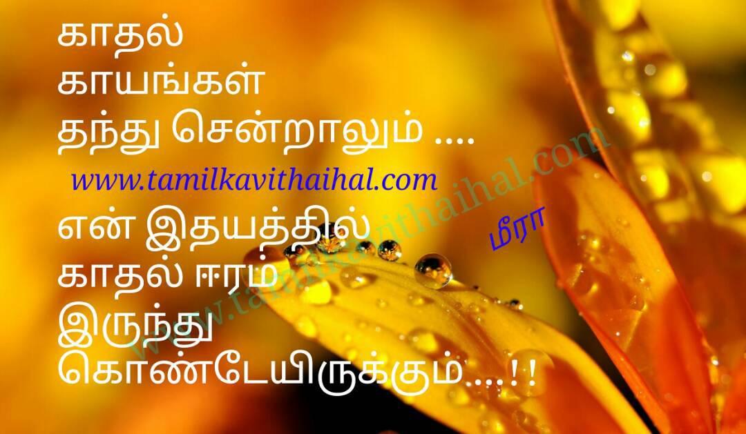 Amazing kadhal tholvi feel about love inside in heart eeram kaayam thandhu sendralum meera poem whatsapp pic dp