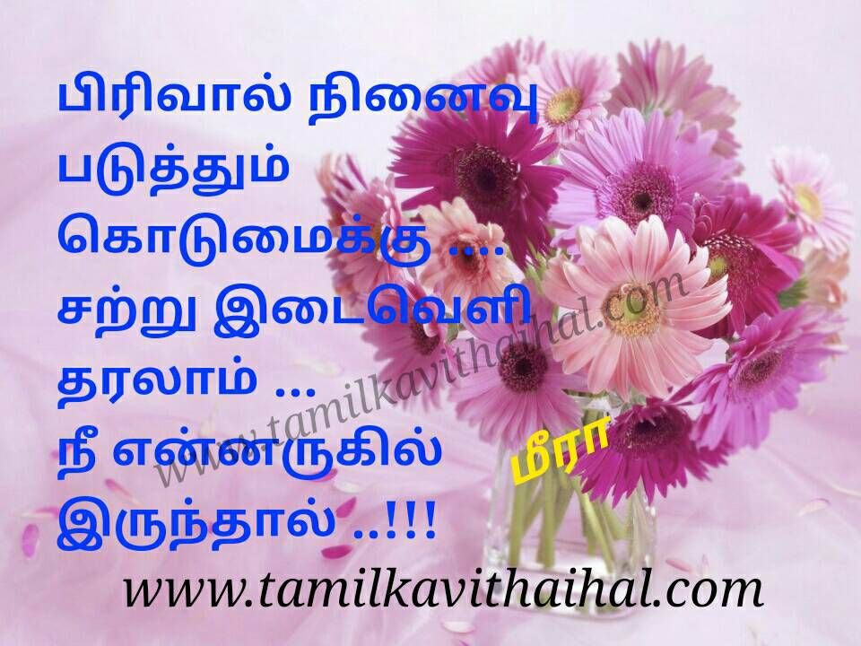 Amazing line for kadhal kalyanam failure quotes in tamil pirivu kodumai satru idaiveli nee arukil meera love poem whatsapp soham dp