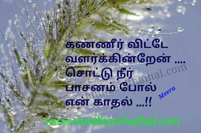 Amazing love failure quotes in tamil kanner vittu valarum kadhal pasanam meera poem dp pic download