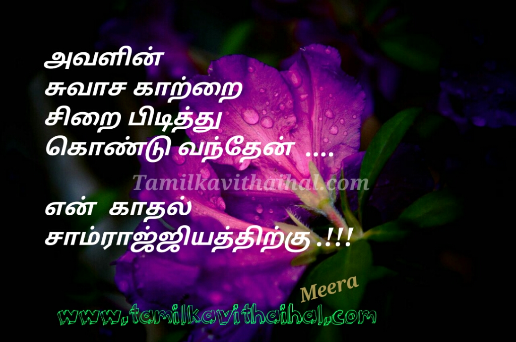 Amazing love kavithai avalin suvasam katru sirai kadhal samrajyam love at first sight meera poem dp whatsapp image download