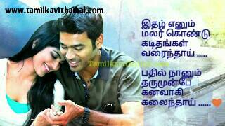Amazing Love Proposal Boy Feel Thanush Tamil Songs Download Whatsapp