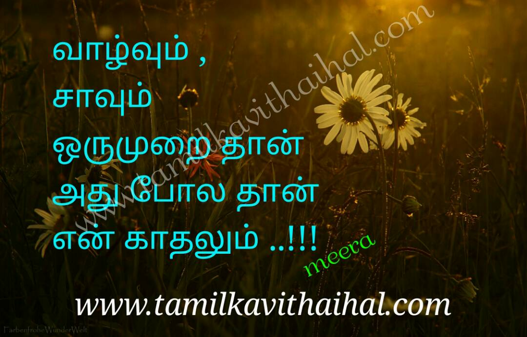 Amazing qoutes for kadhal valvu savum oru murai love meera poem facebook images