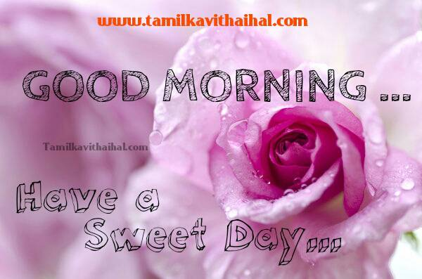 Amazing tamil good morning wishes kalai vanakkam quotes dp status download