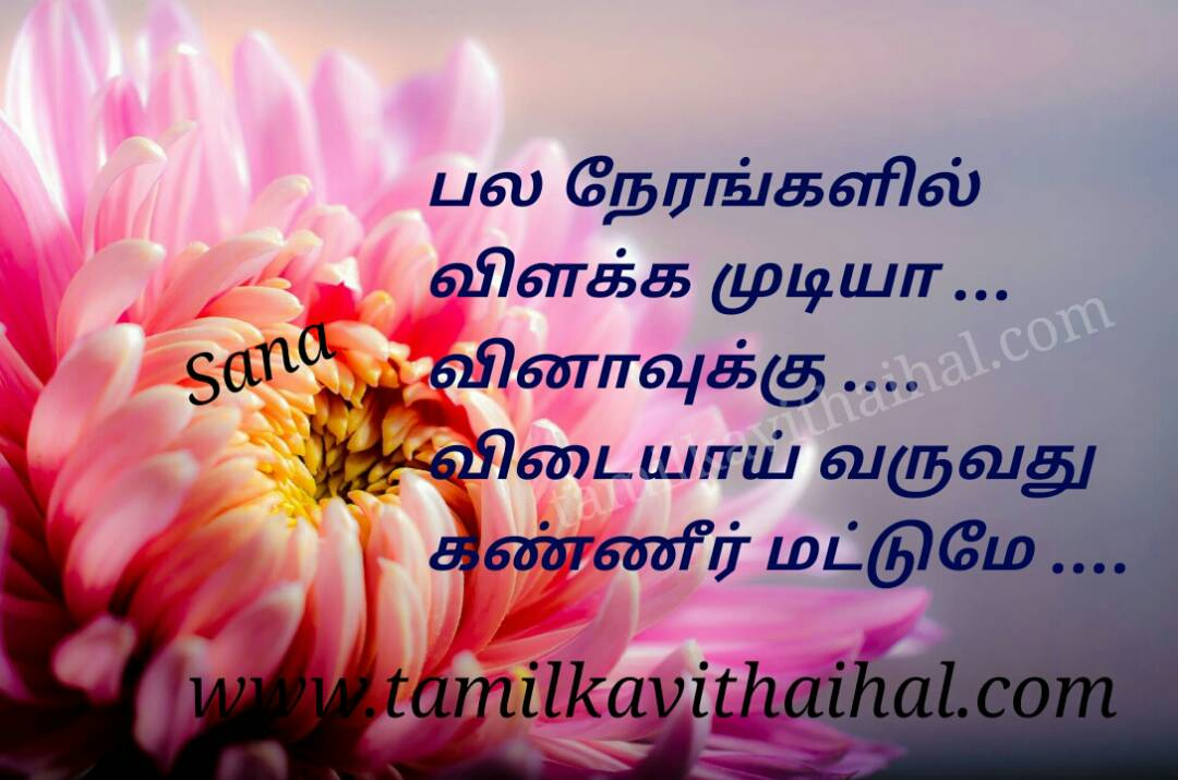Amazing Tamil Life Pain Quotes Love Failure Valkkai Thathuvam Sana
