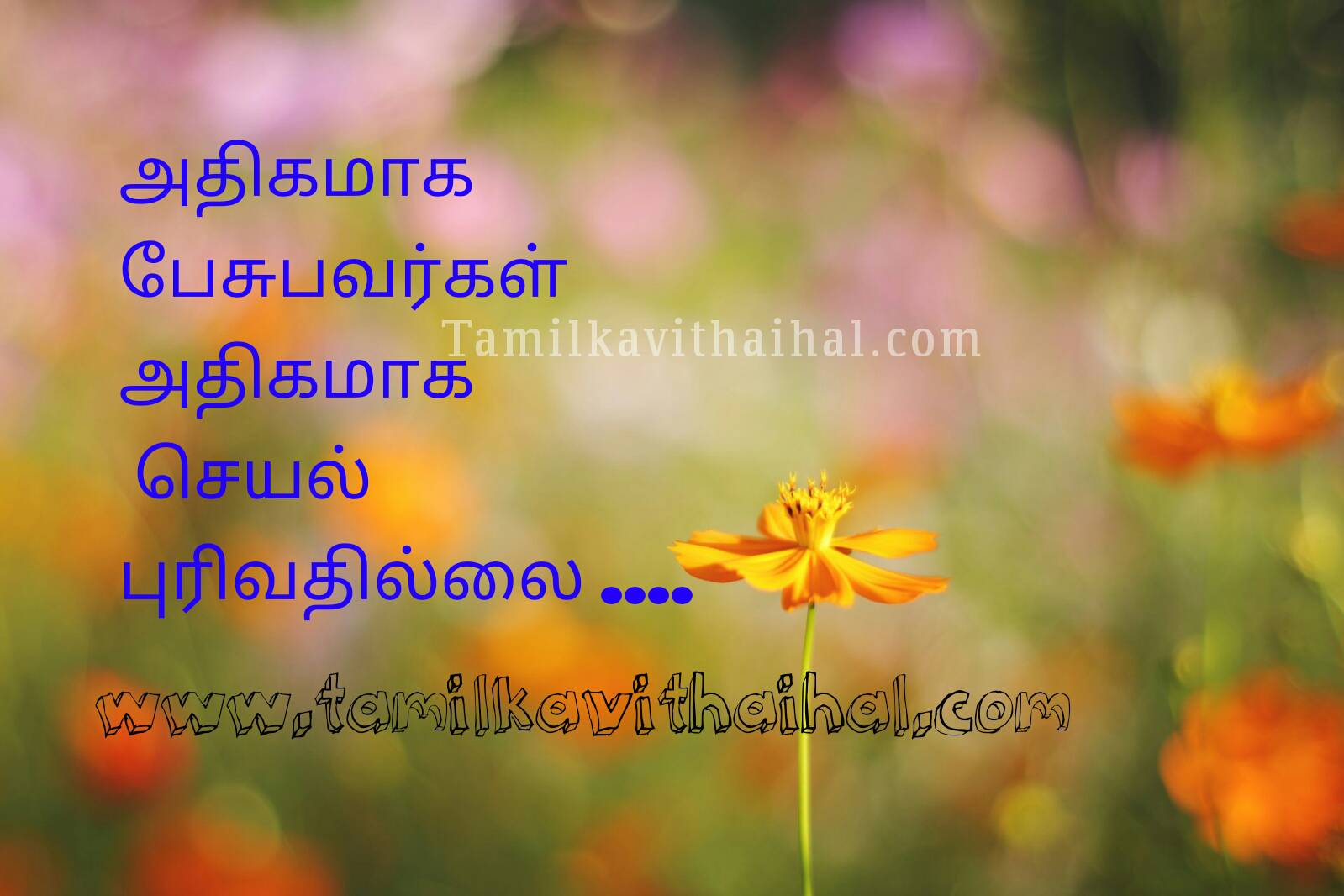 Awesome quotes talkative person seyal athikam illai best advise thathuvam whatsapp dp pic