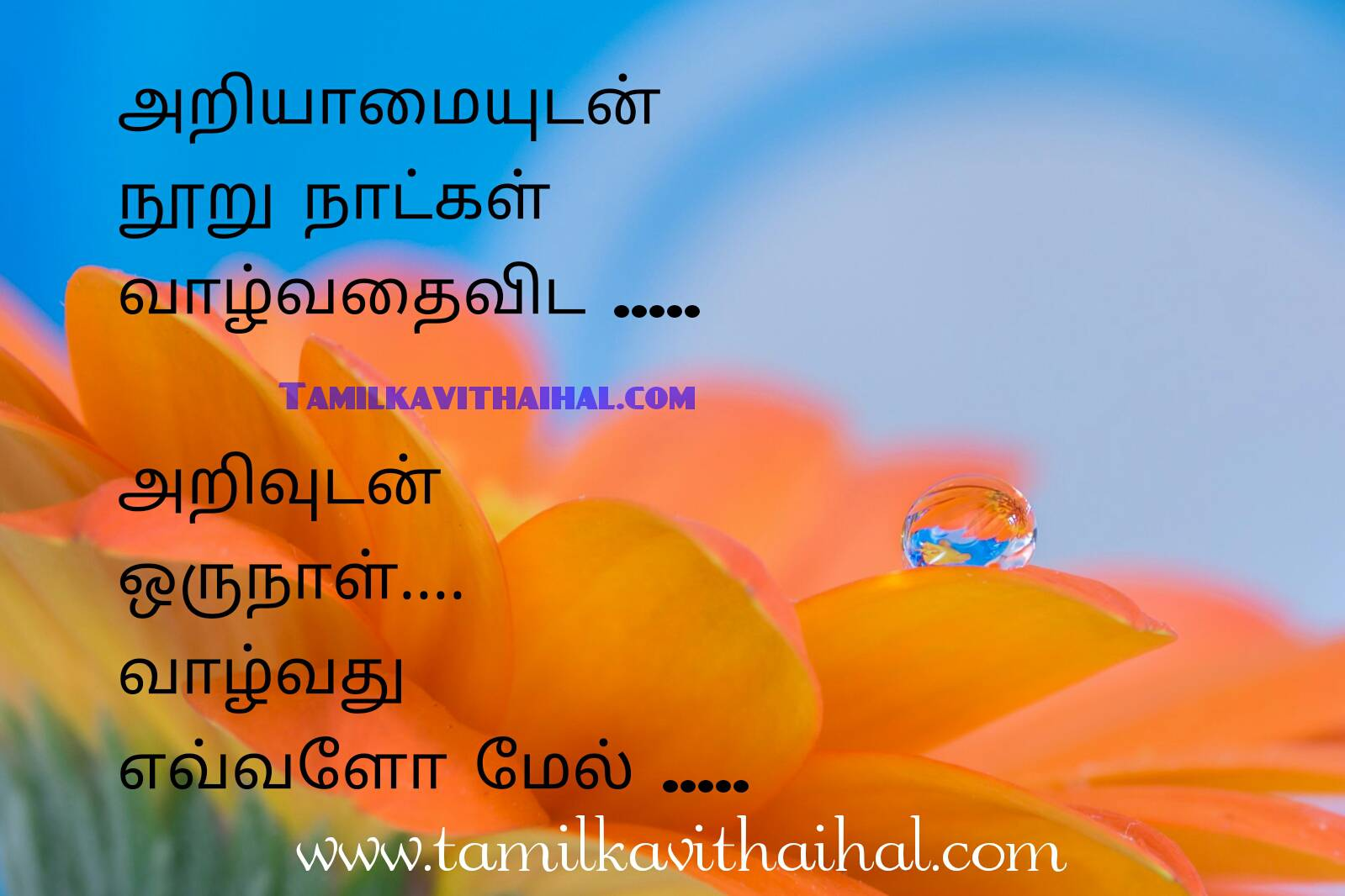 Awesome Tamil Quotes With Picture About Feelinf Love Heart Touching