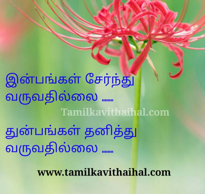Awwsome quotes for happiness and sadness life reality depression pain emotional thathuvam in tamil whatsapp dp wallpapper