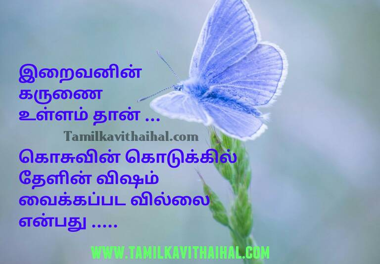 Beautiful feeling quotes in tamil god inspirational thathuvam life positive word facebook status wallpapper