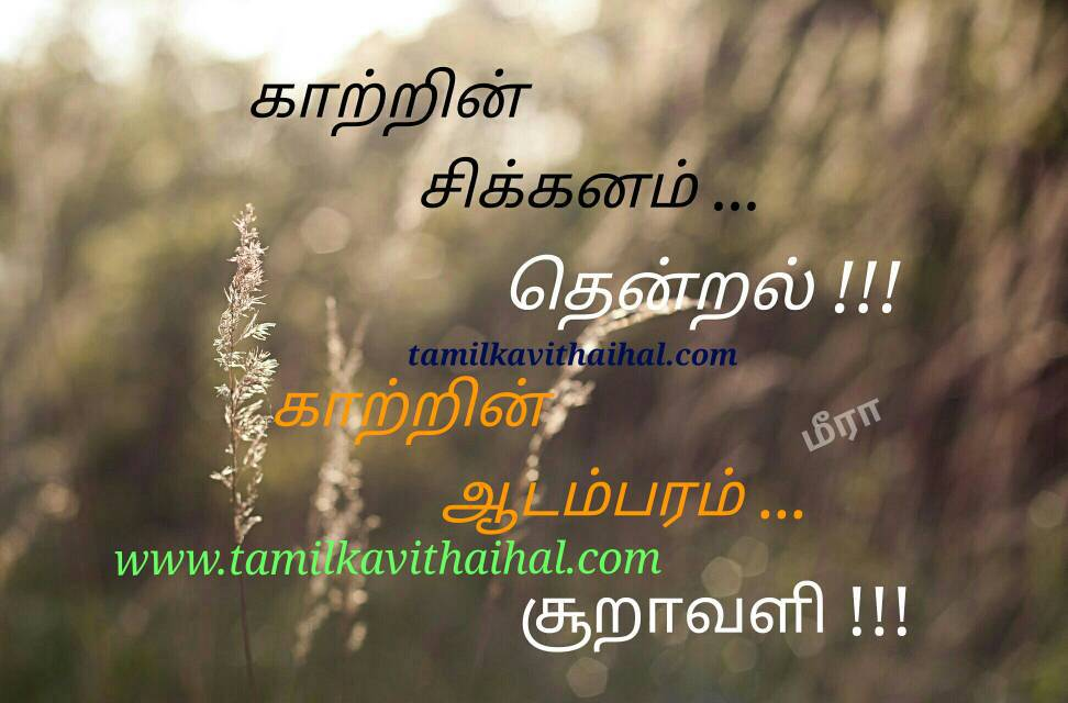 Beautiful haikoo tamil nature kavithai kaatru thendral meera poem whatsapp dp pic