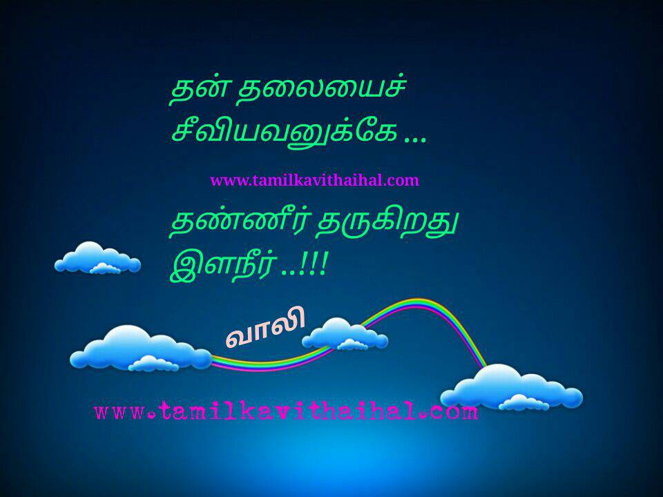 Beautiful hikoo kavithai vaali tamil hd wallpaper ilaneer thalai thanner tharukiradhu profile image