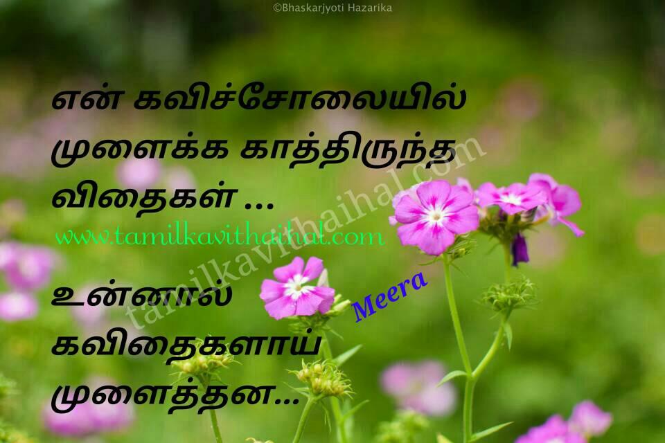 Beautiful love kavithai tamil kavi solai vidhai kadhal hd wallpapper meera poem facebook status pic