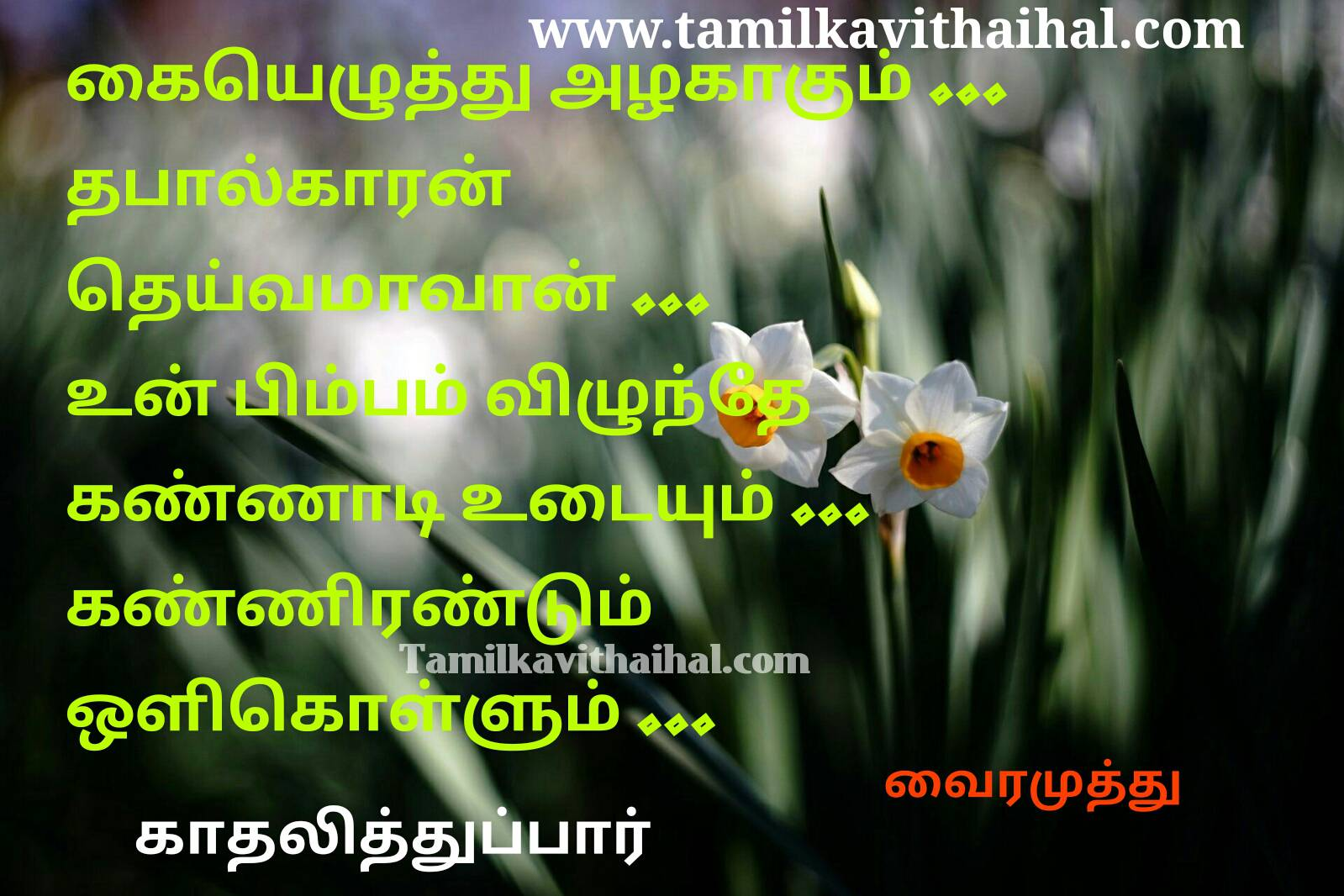 Beautiful love proposal vairamuthu kadhal kavithaigal kaieluthu alaku un bimbam vilunthu kannadi udaiyum kadhalithupar image downlaod