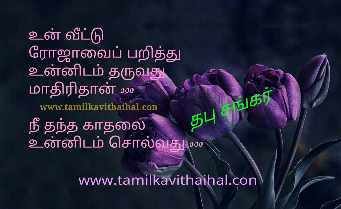 Beautiful love quotes from thabu sankar books famous youth kavinger roja parithu unnidam solla vanden hd image download