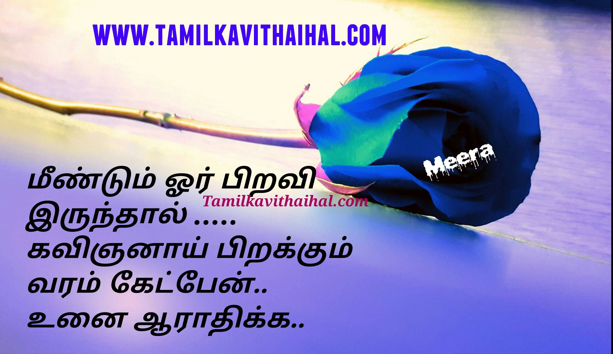 Beautiful love quotes in tamil language piravi love lover kavinkan kavithai varam ketpen meera poem whatsapp dp wallpaper