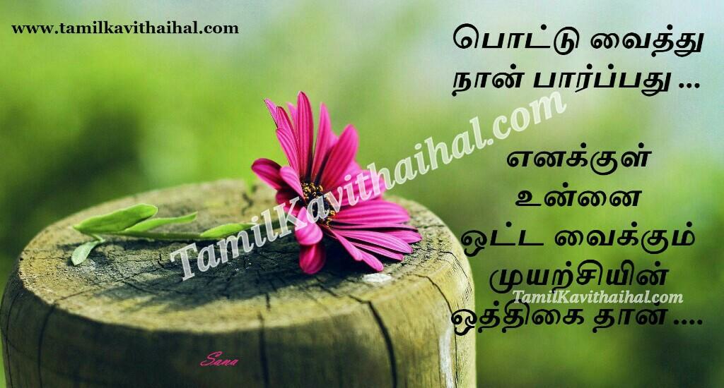 Beautiful pink flower pottu kavithai girl romance feel tamil sana poem whatsapp images
