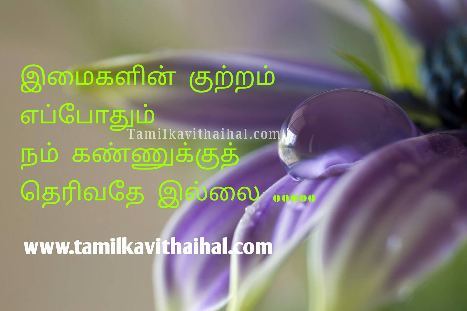 Beautiful quotation for truth life true love imaikal kan eye whatsapp status dp wallpapper