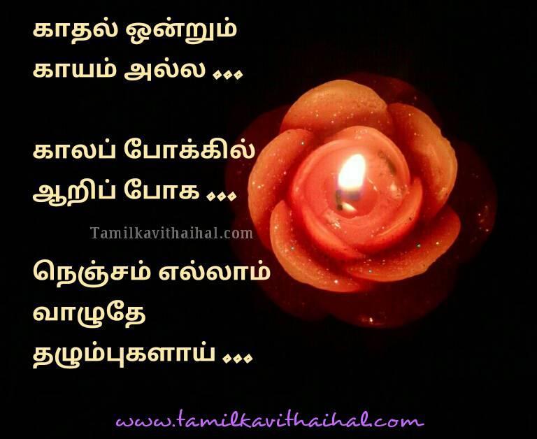 Beautiful soham song kadhal virus film kathal ondrum kayam alla lyrics best solo love failure quotes