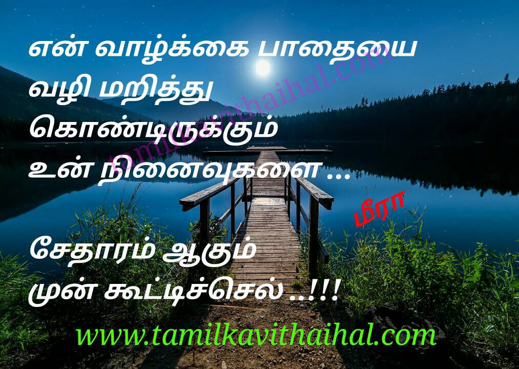 Beautiful tamil lines for whatsapp dp status about love failure ninaivu memories valkkai pathai meera kanner poem pic