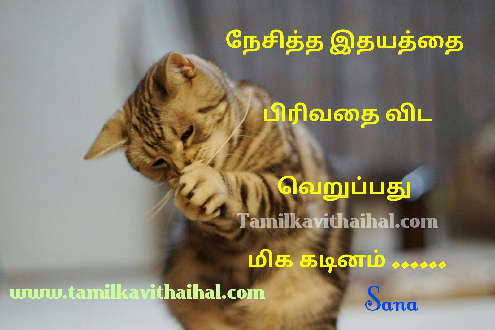 Beautiful tamil pirivu thathuvam veruppu hate others life kadinam nesam quotes sana pictures download
