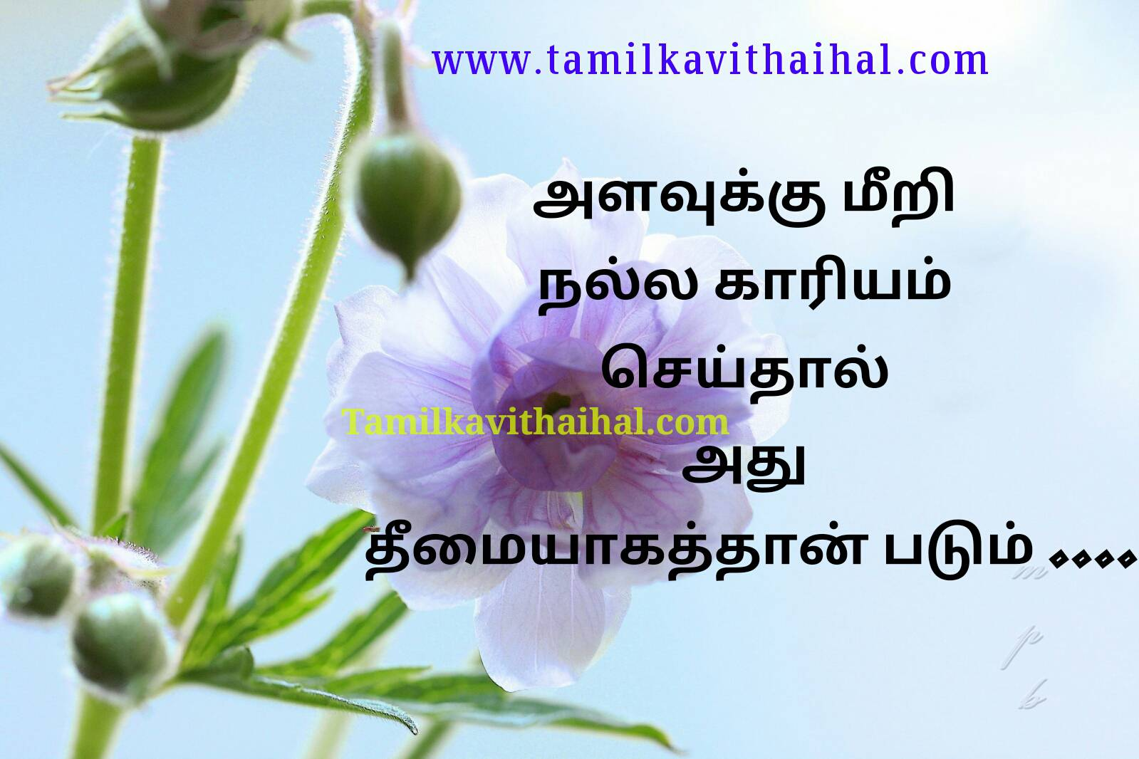 Beautiful truth of life quotes lesson negative mind thoughts reality people sad thathuvam wallpapper download