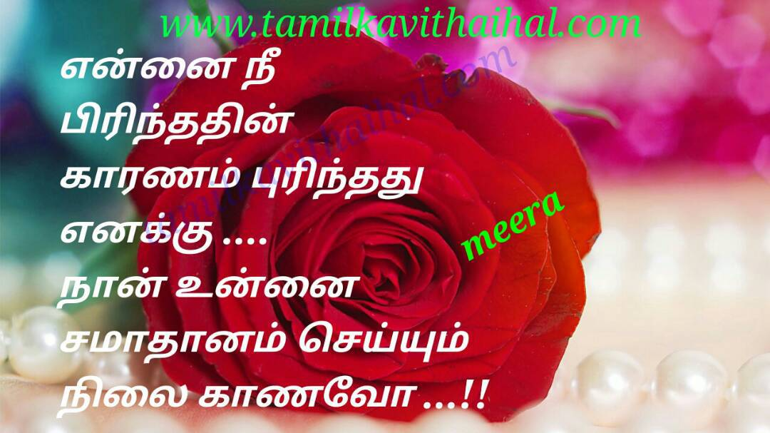 Beautiful understand poem for husbend and wife cute pirivu anbu samathanam karanam enakku meera whatsapp dp status