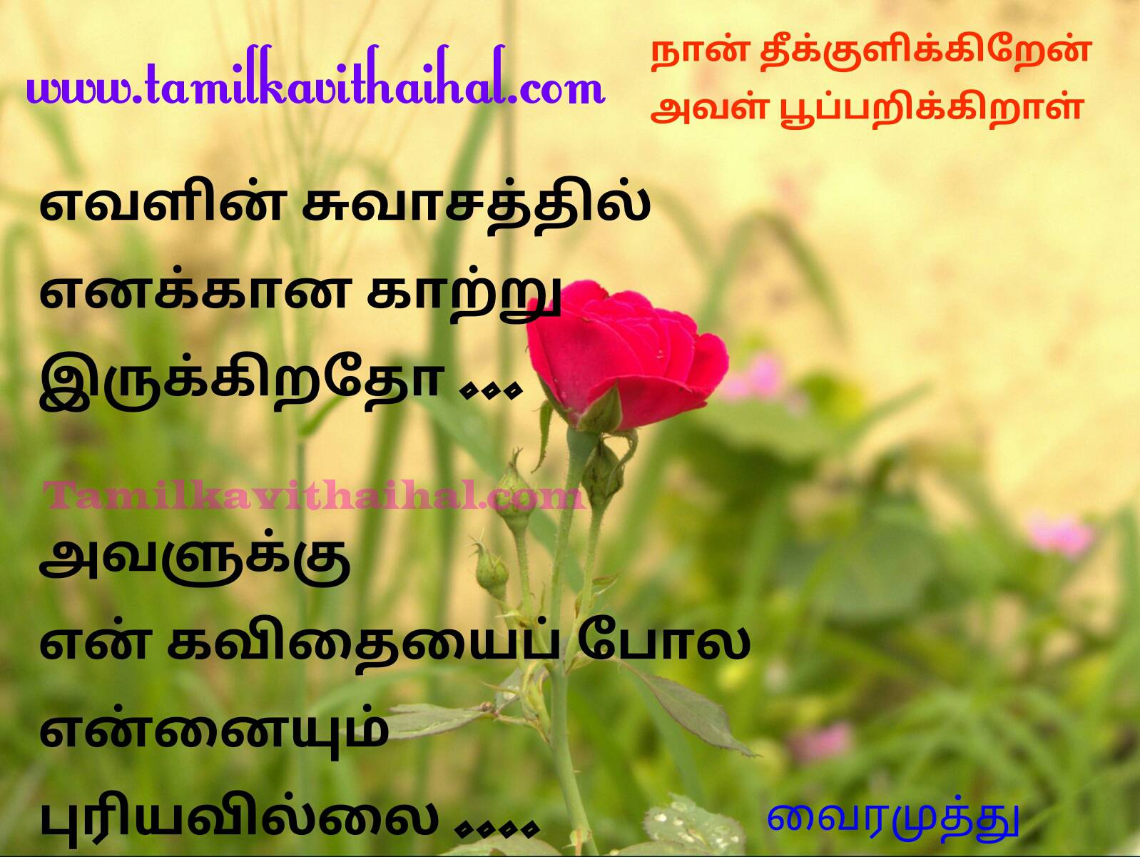 Beautiful vairamuthu tamil kavithaigal naan thekkulikiren aval pooparikiraal books love story boy emotional feel image 5