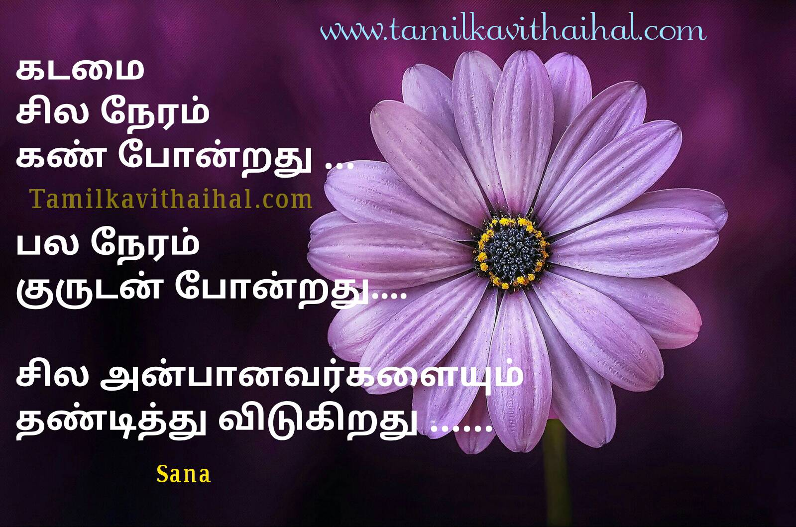 Beautiful Words For Life Relationship Quotes In Tamil Kadamai Kan