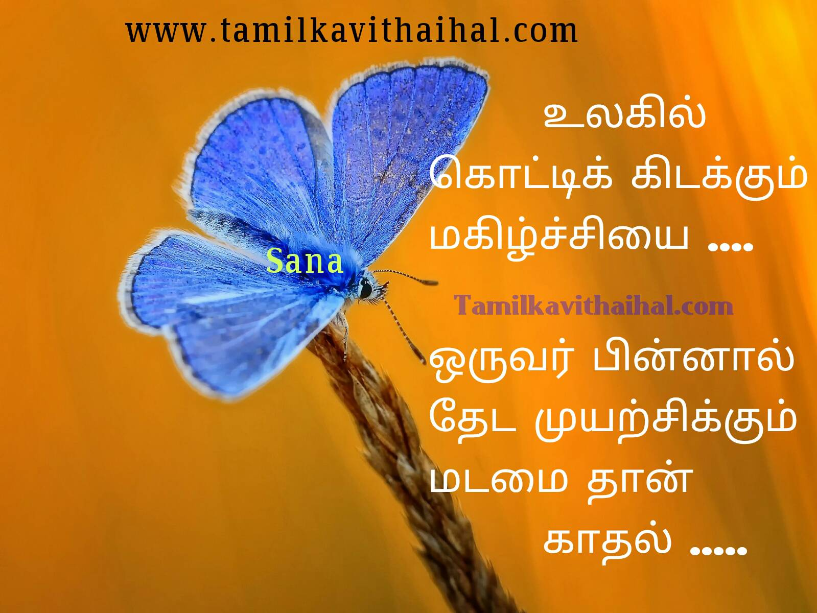 Beautiful words for love relationship failure quotes in tamil happy life not only depends lover madamai kadhal sana thathuvam image