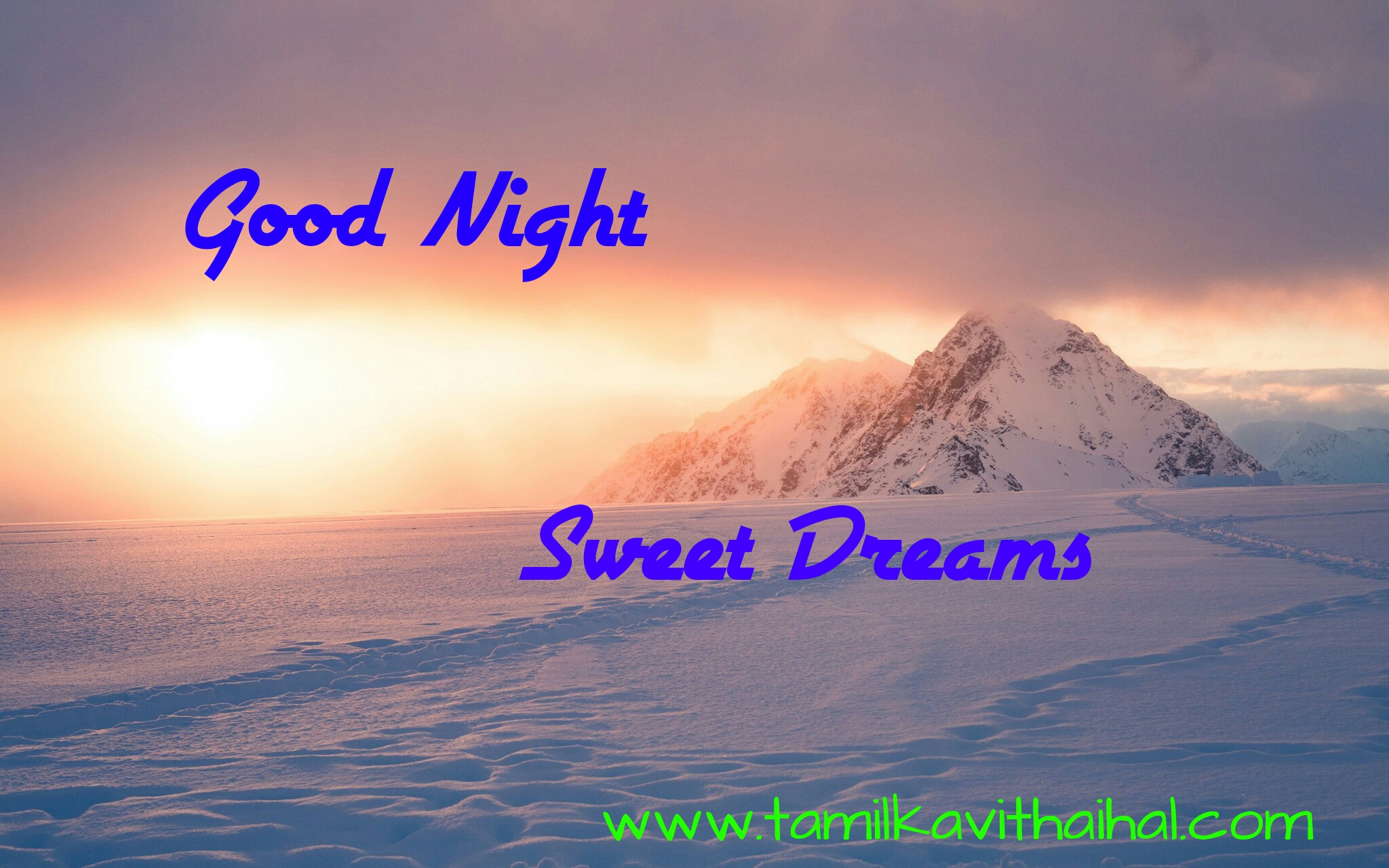 Best good night wishes gudngt quotes in tamil whatsapp dp images