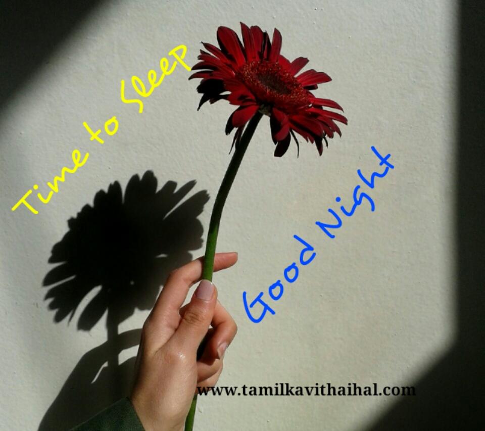 Best good night wishes tamil iarvu vanakkam kavithaigal
