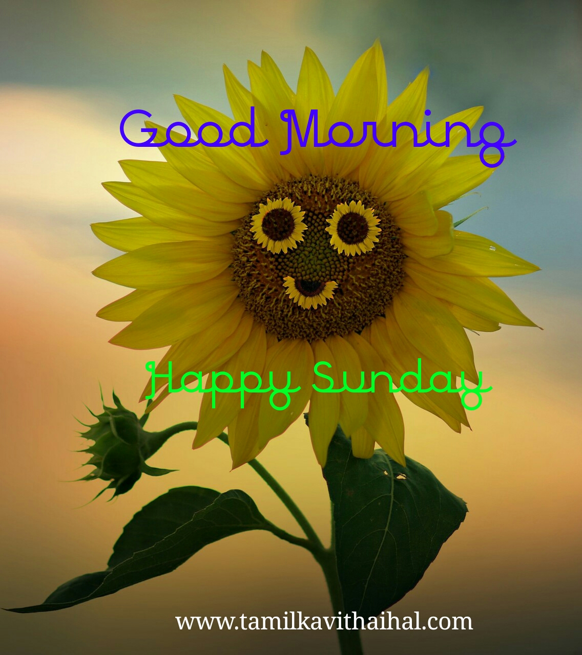 Best gud mrg quotes in tamil happy sunday msg images
