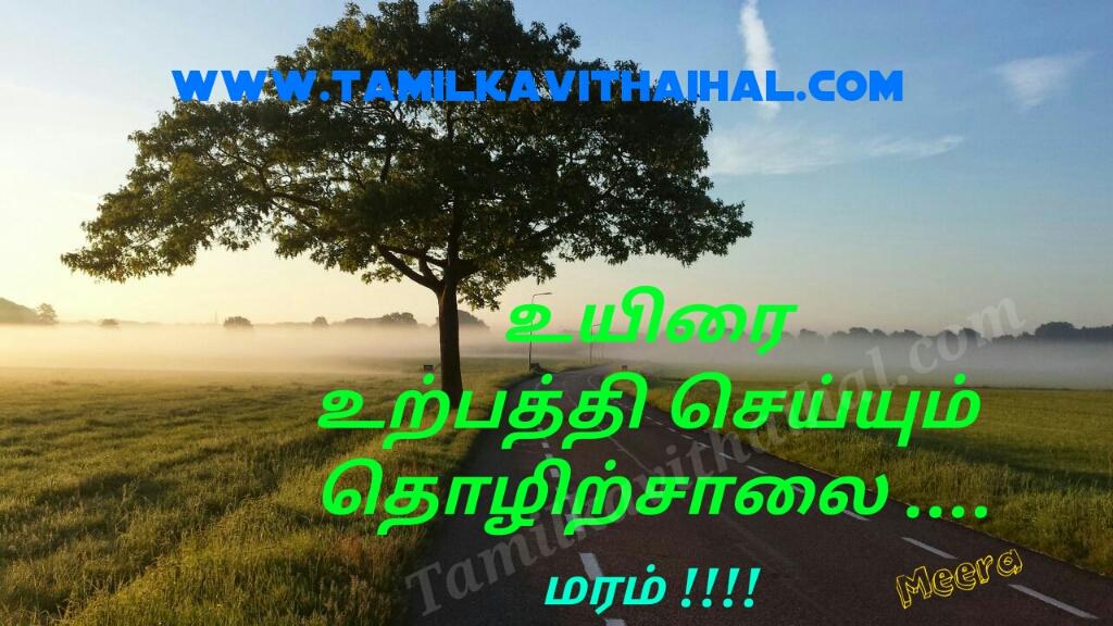 Best haikoo kavithai for maram tree nature iyarkkai uriy hikoo meera poem whatsapp status download