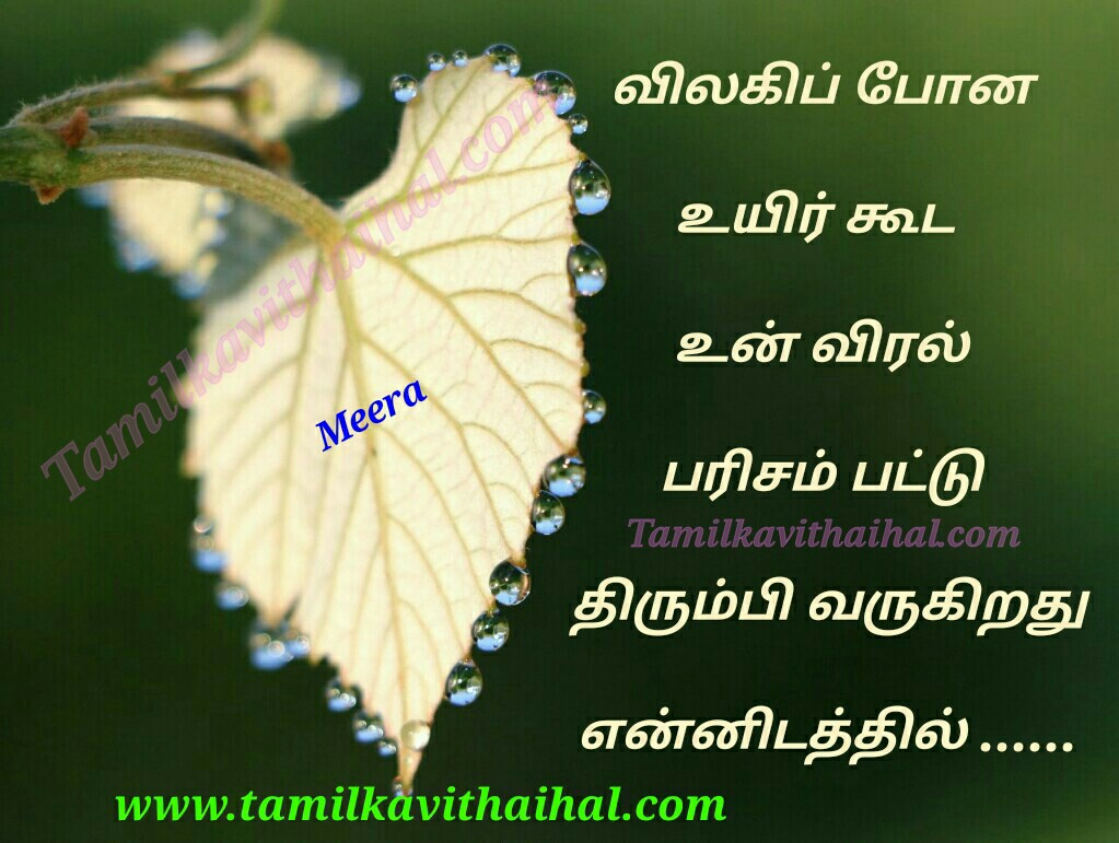 Best kadhal kavithai in tamil language vilaki sendra uyir un viral parisam ennidam meera love poem whatsapp images download