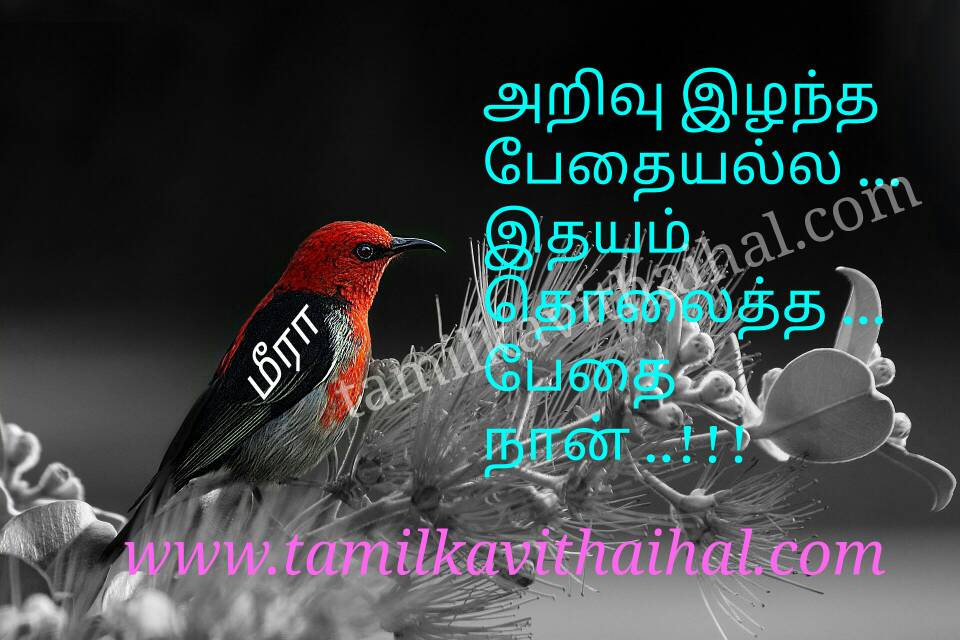 Best kanner quotes in tamil language arivu pethai idhayam tholaintha kadhal meera love poem pic wallpapper