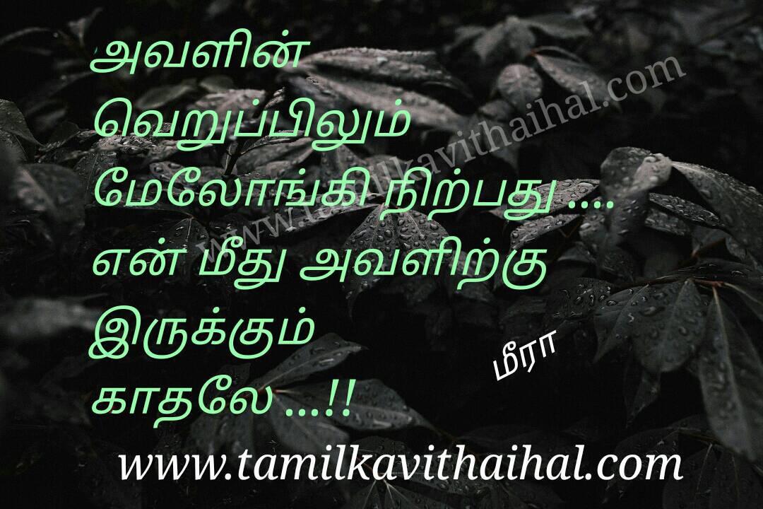 Best love sweet anbu nirpadhu kadhal meera tamil quotes facebbok page status simple image