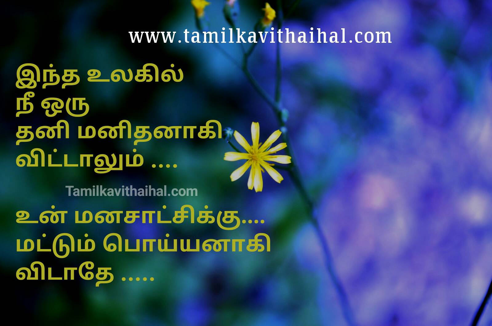 Best manam feeling world thani manithan lonely emotional memory poiyan thathuvam kavithai facebook status