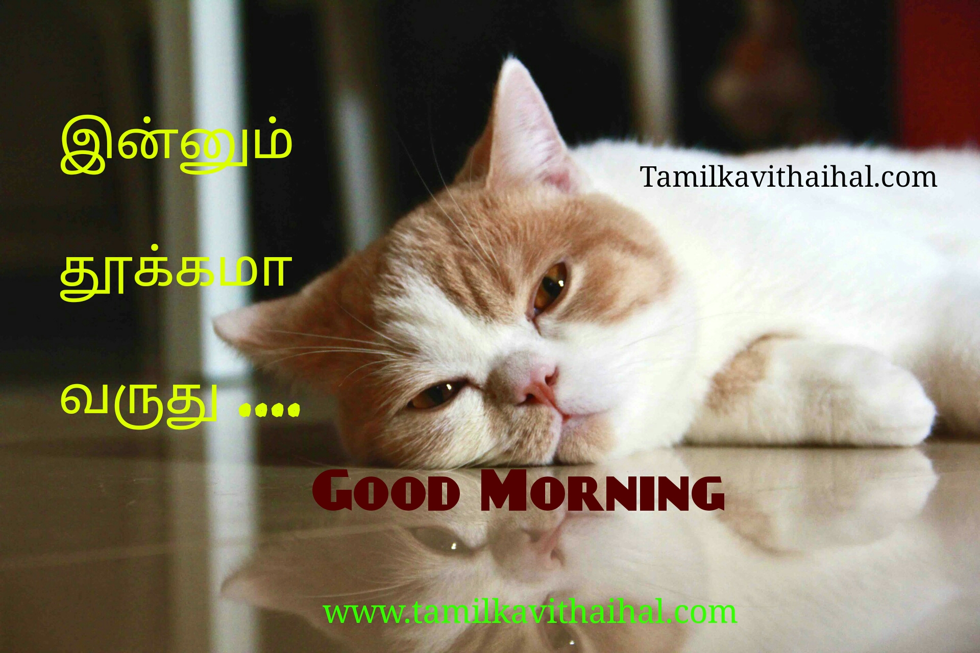 Best quotes for gud mrg wishes kalai vanakkam valthukkal msg download