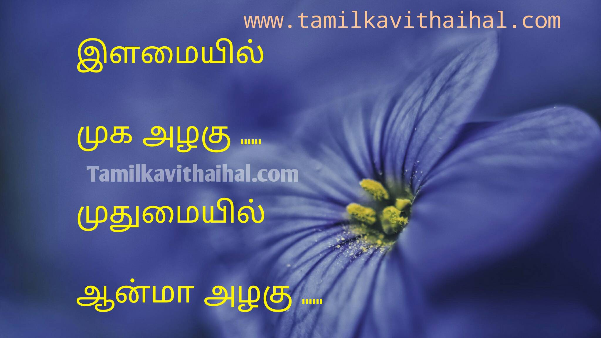 Best quotes for older younger people young face beauty soul aanma muthumai ilamai thathuvam whatsapp hd wallpapper