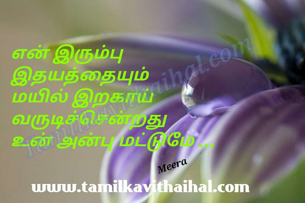 Best romantic kavithai in tamil irumbu idhayam mayil iraku anbu love meera poem facebook images download