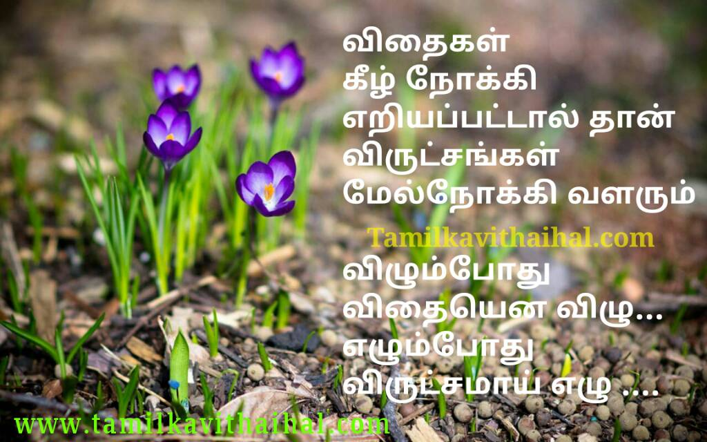 Best Self Confidence Positive Thoughts Quotes In Tamil Language Real