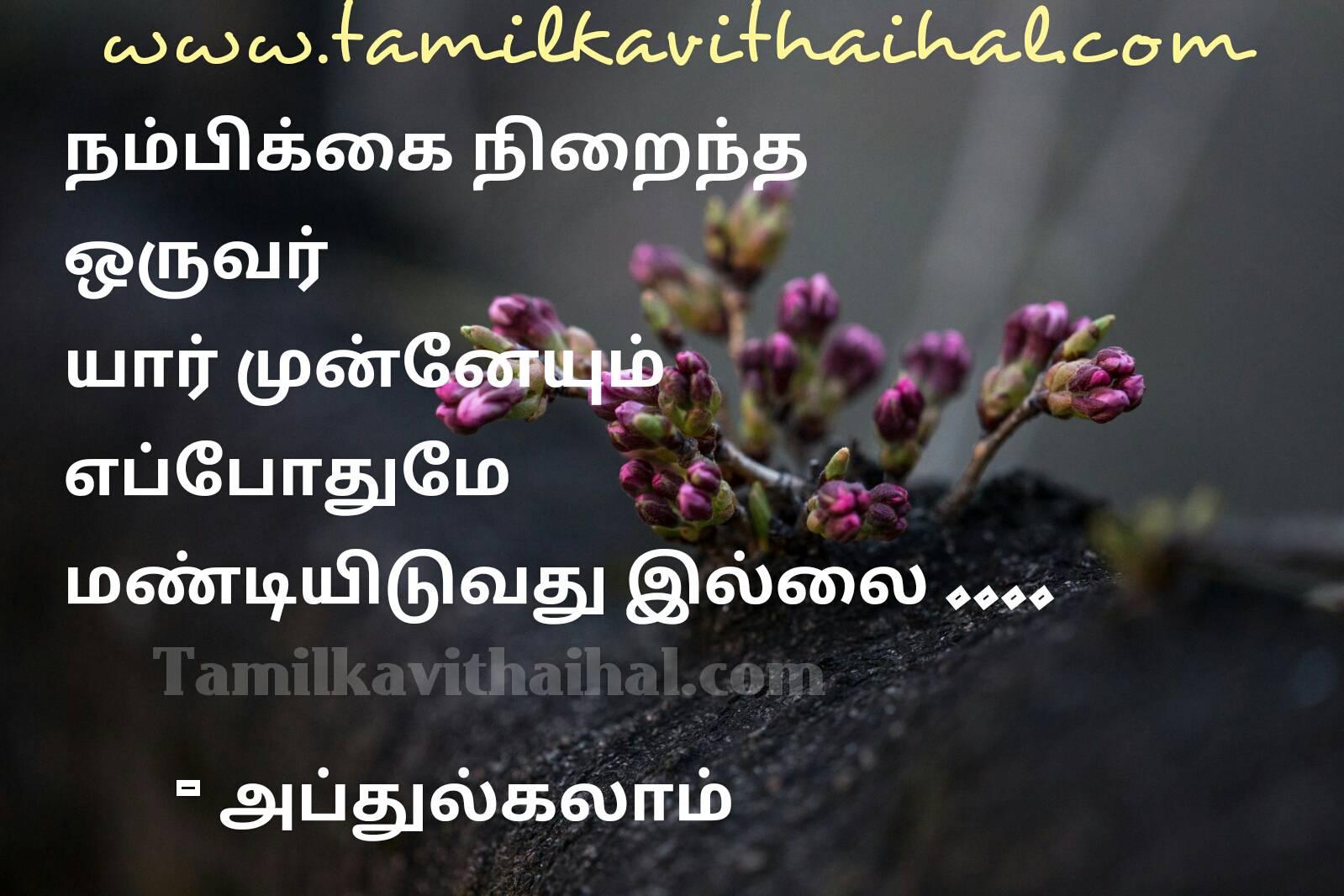 Best tamil abj abdhul kalam quotes nambikkai positive thathuvam facebook whatsapp dp download