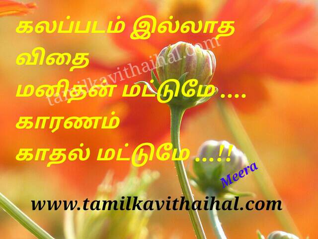 Best tamil quotes and thathuvam valkkai life motivation meera poem manithan dp status pic