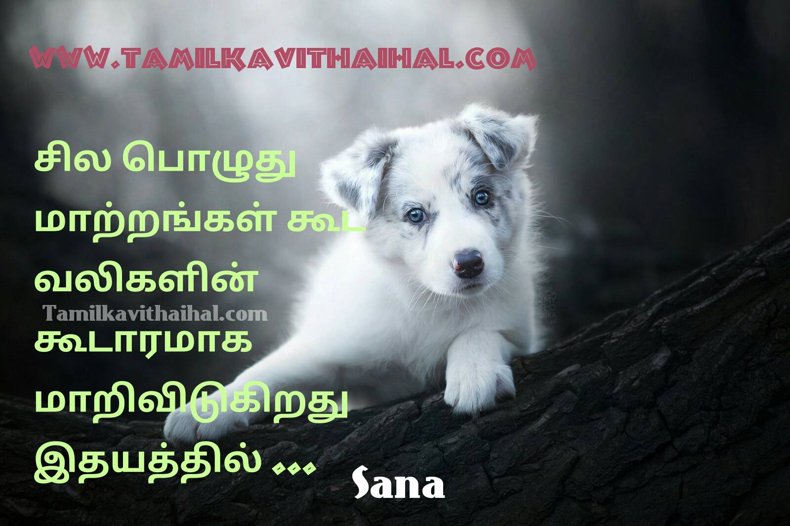 Best Tamil Thathuvam Maatram Vali Valkkai Idhyam Positive Life