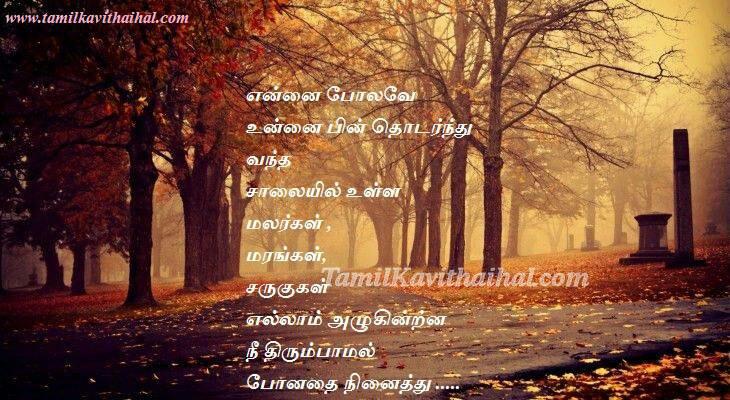 Boy propose girl tamil kadhal kavithai salai pookal maram nature love HD image