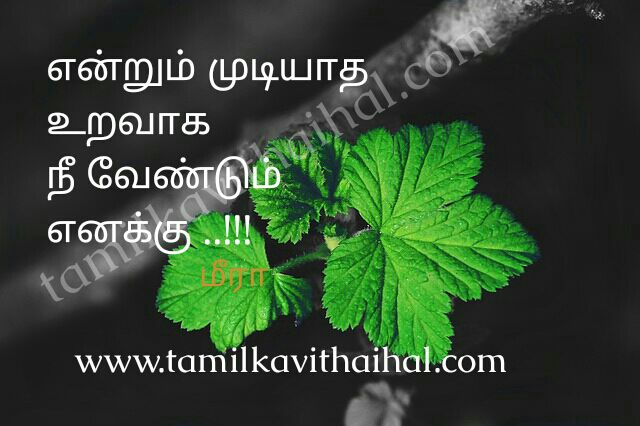 Cute love proposal in tamil boy feel about our loved one mudiyatha uravu aval meera poem whatsapp images download
